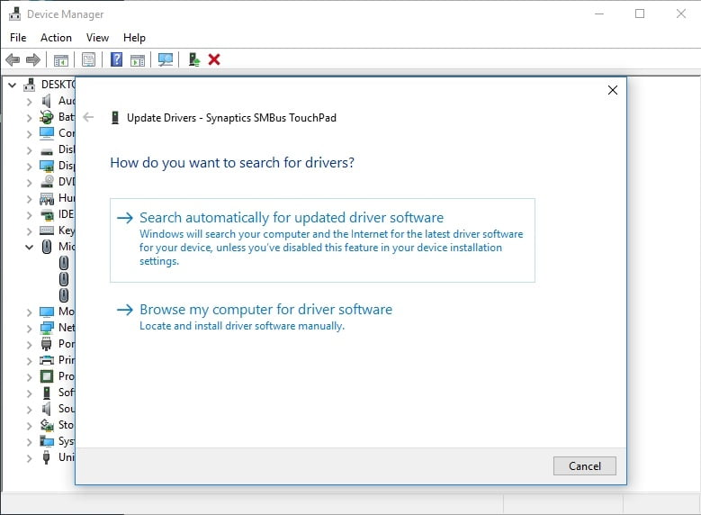 Let Device Manager search for the necessary driver software online.